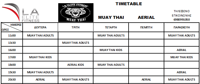 MUAY THAI AERIAL